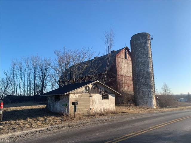 Sanford Road, Lodi, OH 44254 (MLS #4170005) :: RE/MAX Valley Real Estate