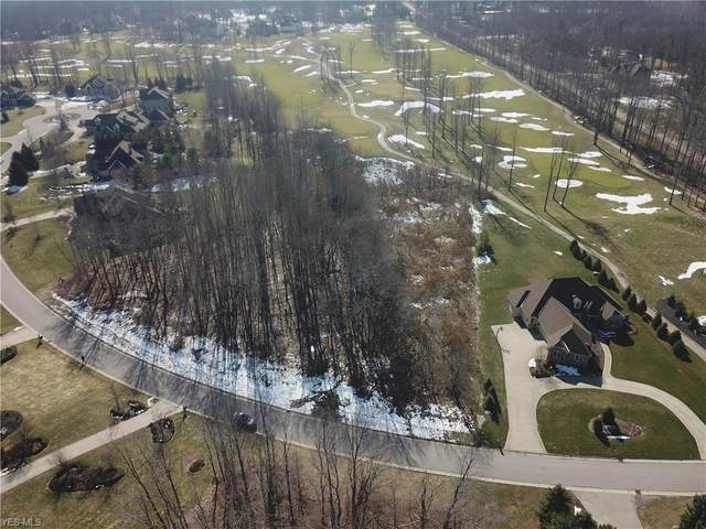 10528 Oakmont Way, Painesville, OH 44077 (MLS #4170253) :: RE/MAX Valley Real Estate