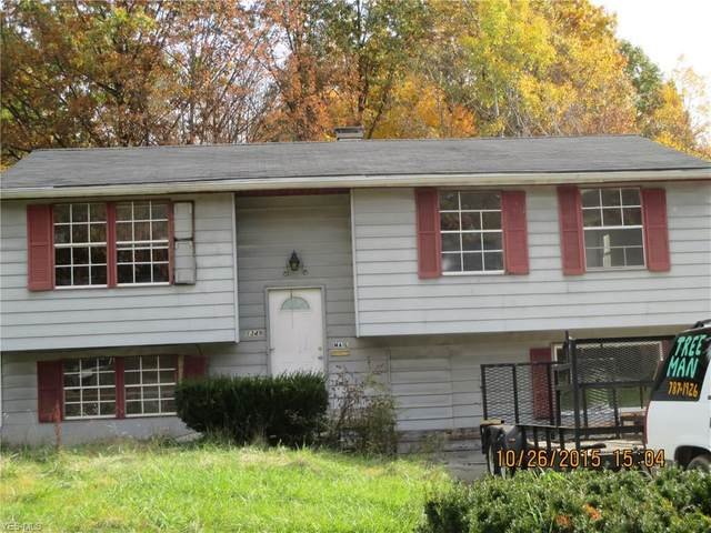 1349 N Gray Avenue, Youngstown, OH 44505 (MLS #4171082) :: The Art of Real Estate
