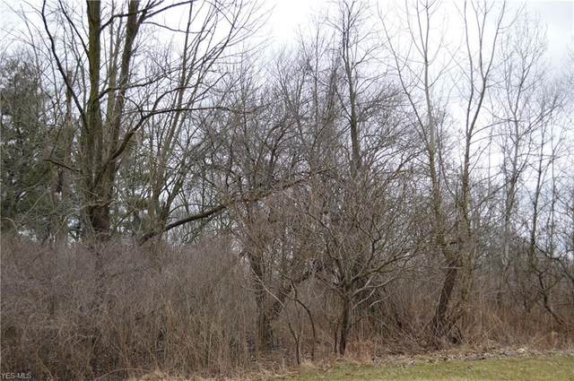 Lot 15 Wyoga Lake Road, Cuyahoga Falls, OH 44224 (MLS #4172025) :: RE/MAX Trends Realty