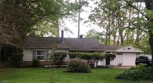 7735 Eisenhower Drive, Willoughby, OH 44094 (MLS #4174618) :: RE/MAX Trends Realty