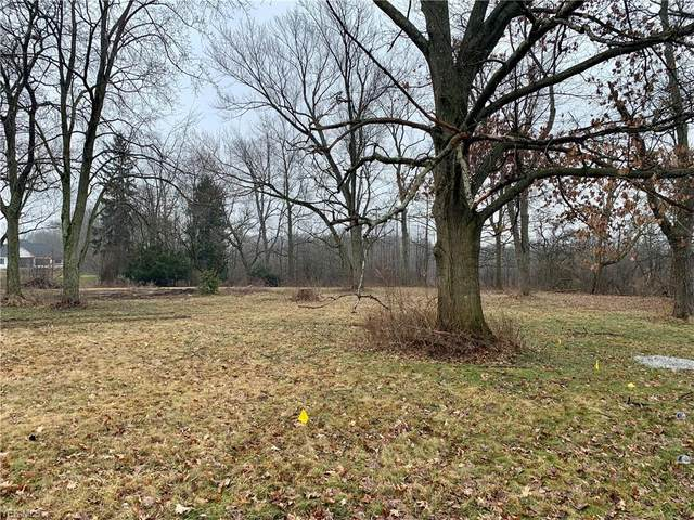 TBD Revere Road, Akron, OH 44333 (MLS #4174628) :: RE/MAX Trends Realty