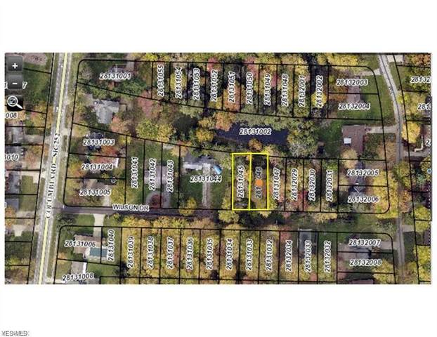 V/L Wilson Drive, Olmsted Falls, OH 44138 (MLS #4175196) :: Select Properties Realty