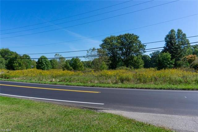 S Raccoon Road, Canfield, OH 44406 (MLS #4177517) :: RE/MAX Trends Realty