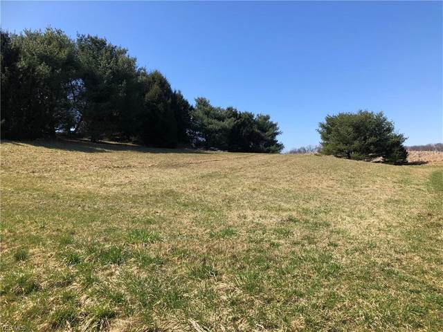 Twp Road 749, Loudonville, OH 44842 (MLS #4178126) :: The Holden Agency