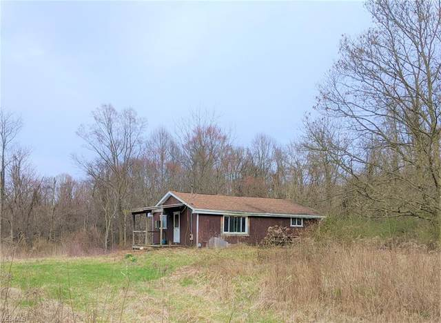 1817 Township Road 54, Hammondsville, OH 43930 (MLS #4178435) :: Tammy Grogan and Associates at Cutler Real Estate