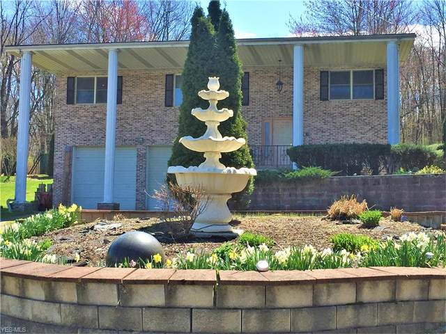 1590 Salt Springs Road, Mineral Ridge, OH 44440 (MLS #4179768) :: The Crockett Team, Howard Hanna