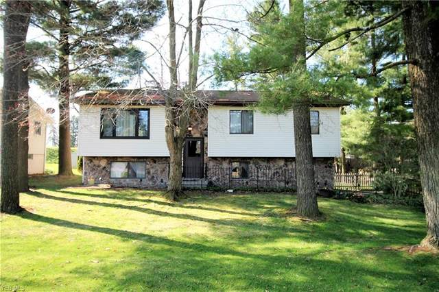 2986 Sandy Lake Road, Ravenna, OH 44266 (MLS #4180046) :: RE/MAX Trends Realty