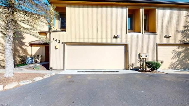 1424 Loop Road, Kent, OH 44240 (MLS #4180800) :: Tammy Grogan and Associates at Cutler Real Estate