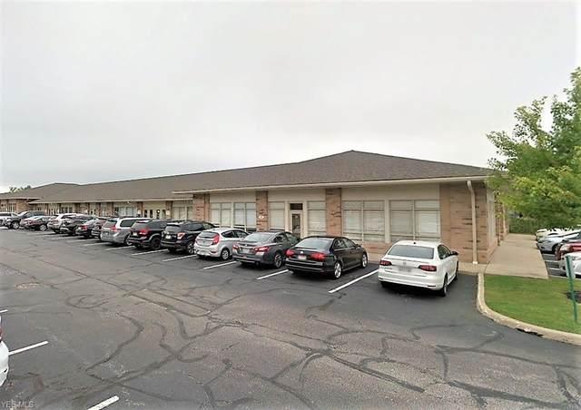 31300 Solon Road 13 & 14, Solon, OH 44139 (MLS #4181343) :: Jackson Realty