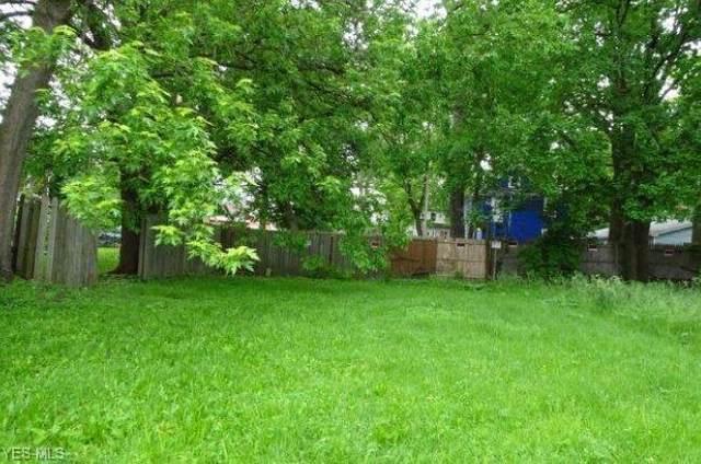 805 Sumner Street, Akron, OH 44311 (MLS #4181582) :: Tammy Grogan and Associates at Cutler Real Estate