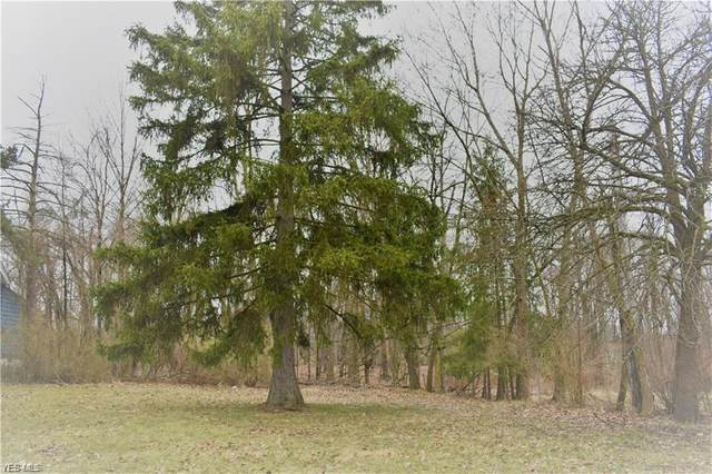 Grove Avenue, Oakwood Village, OH 44146 (MLS #4182513) :: RE/MAX Valley Real Estate