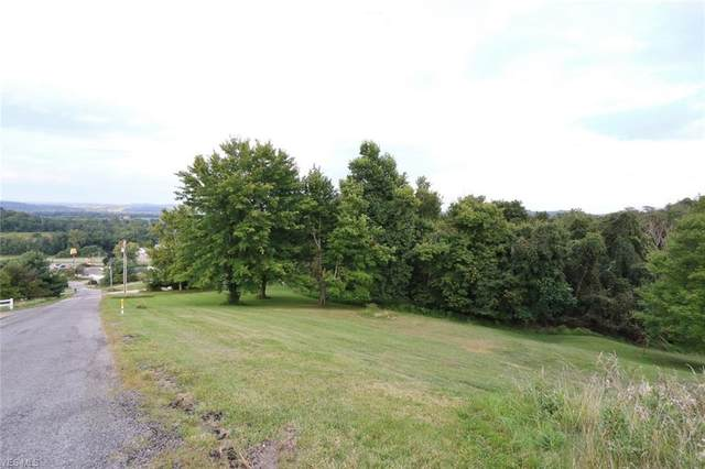 Ames Drive, Dresden, OH 43821 (MLS #4182559) :: Keller Williams Chervenic Realty