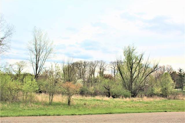 Birkdale Street NW, Canton, OH 44708 (MLS #4183237) :: RE/MAX Edge Realty