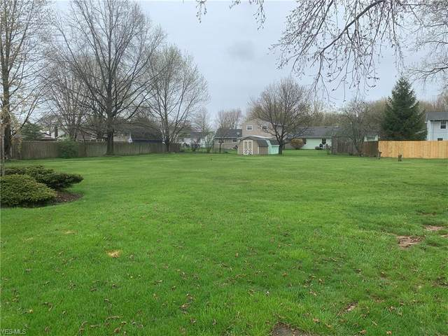 Chesapeake Court, Elyria, OH 44035 (MLS #4184584) :: The Holden Agency