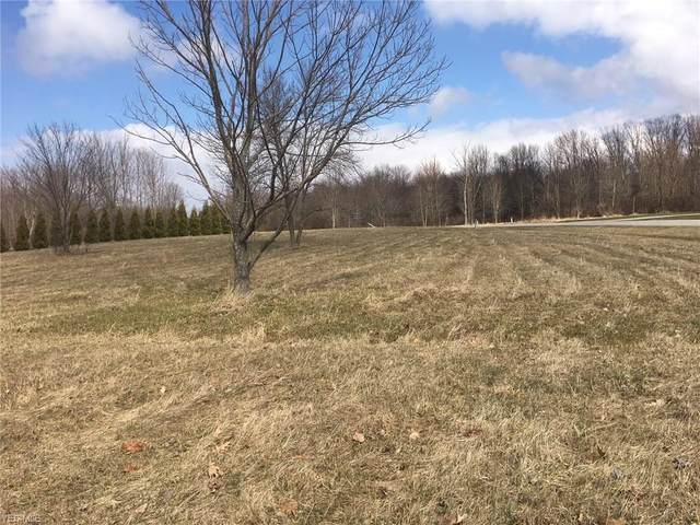 1 Weimer Drive, Saybrook, OH 44004 (MLS #4185192) :: Tammy Grogan and Associates at Cutler Real Estate