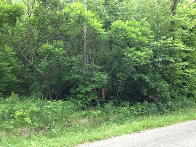 Sharrott Road, Youngstown, OH 44514 (MLS #4185389) :: The Holden Agency
