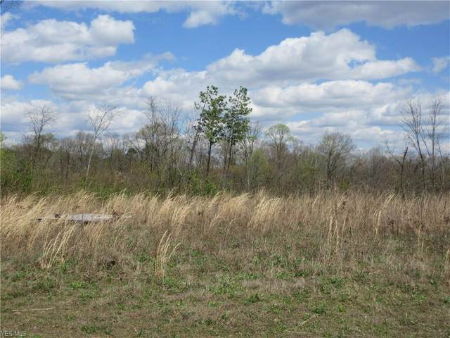 Summit Tract A Road, Bidwell, OH 45686 (MLS #4185802) :: The Holly Ritchie Team