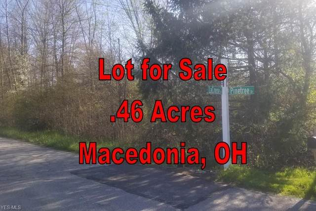 Pine Tree Drive, Macedonia, OH 44056 (MLS #4188579) :: The Art of Real Estate