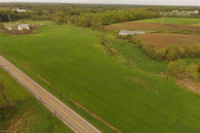 State Route 44, Ravenna, OH 44266 (MLS #4189110) :: Tammy Grogan and Associates at Cutler Real Estate