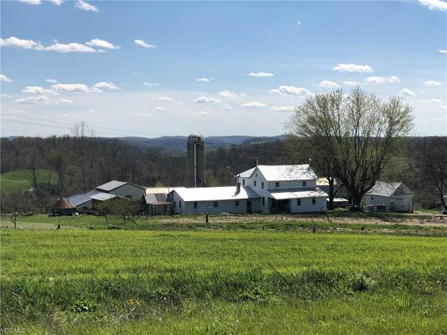 68457 Batesville Road, Quaker City, OH 43773 (MLS #4189419) :: The Holden Agency