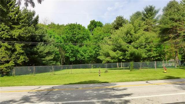 Mill Morr Drive, Painesville, OH 44077 (MLS #4189837) :: The Holden Agency