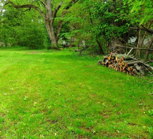 825 Lock Street, Kent, OH 44240 (MLS #4190099) :: Tammy Grogan and Associates at Cutler Real Estate
