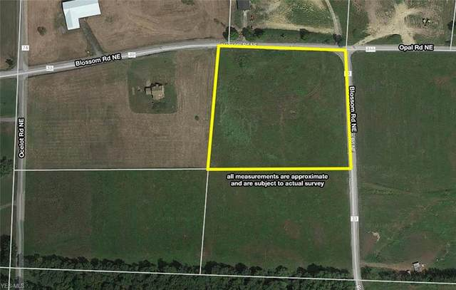 10248 Blossom Road NE, Salineville, OH 43945 (MLS #4190605) :: RE/MAX Valley Real Estate