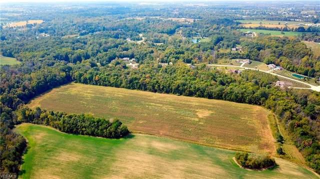Emerald Run Road, Medina, OH 44256 (MLS #4190712) :: RE/MAX Valley Real Estate