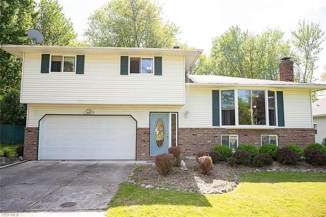 7084 Culver Boulevard, Mentor, OH 44060 (MLS #4191144) :: Tammy Grogan and Associates at Cutler Real Estate
