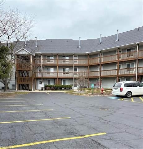 6035 Lake Road W #326, Ashtabula, OH 44004 (MLS #4191843) :: The Crockett Team, Howard Hanna