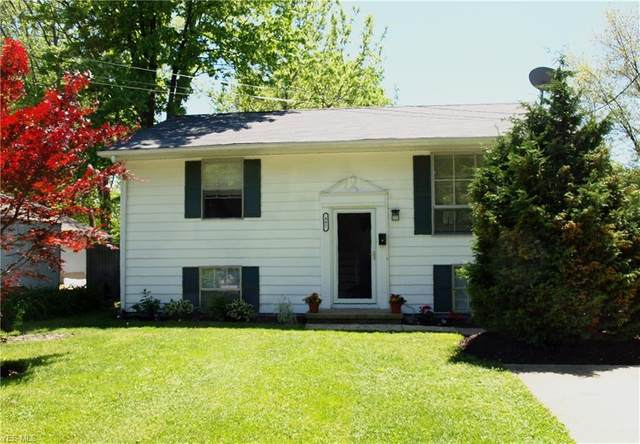 407 Button Avenue, Painesville, OH 44077 (MLS #4191986) :: Tammy Grogan and Associates at Cutler Real Estate