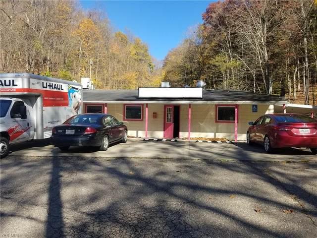 1409 Sinclair Avenue, Steubenville, OH 43952 (MLS #4192209) :: Keller Williams Chervenic Realty
