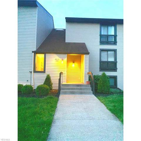 6270 Greenwood #303, Northfield, OH 44067 (MLS #4192291) :: RE/MAX Above Expectations