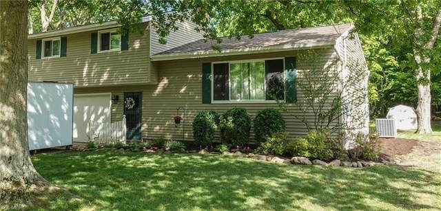 10099 Serene Court, Twinsburg, OH 44087 (MLS #4192348) :: RE/MAX Above Expectations