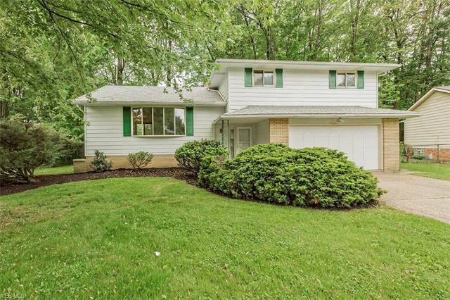 740 Oriole Drive, Eastlake, OH 44095 (MLS #4192475) :: RE/MAX Edge Realty