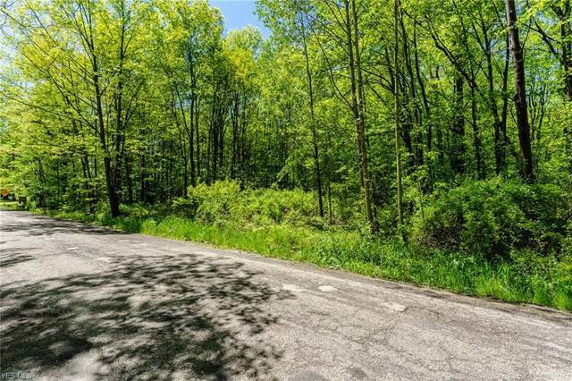N Duck Creek Road, North Jackson, OH 44451 (MLS #4192629) :: RE/MAX Trends Realty