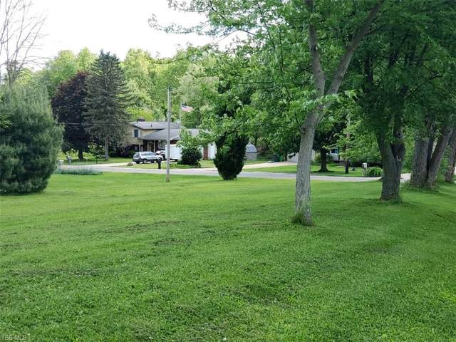 Charleston Drive, Akron, OH 44319 (MLS #4192833) :: Tammy Grogan and Associates at Cutler Real Estate