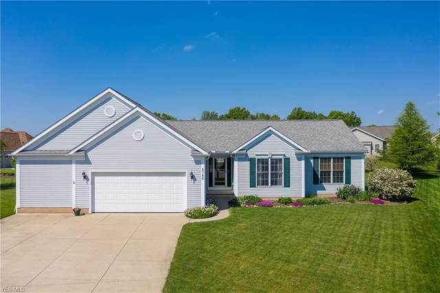 4746 Black Walnut Lane, Ravenna, OH 44266 (MLS #4193520) :: RE/MAX Trends Realty