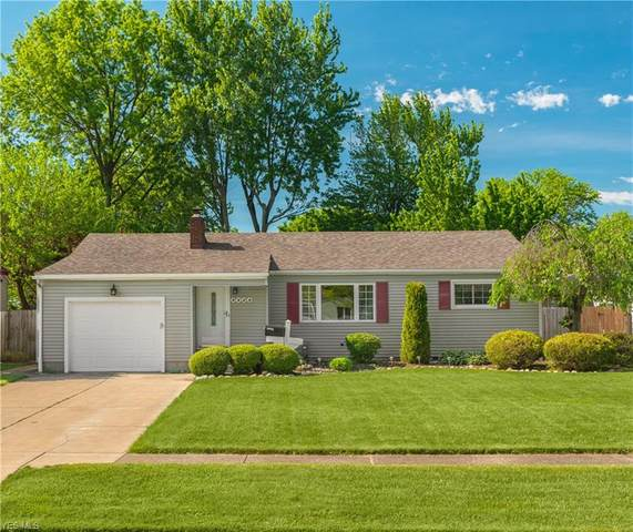 2428 Wilson Drive, Lorain, OH 44052 (MLS #4193547) :: RE/MAX Trends Realty