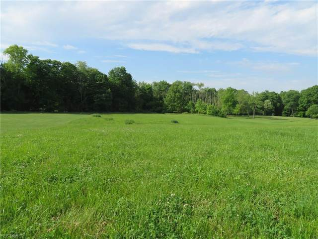 1300 Hunt Club Drive Lot #39, Wooster, OH 44691 (MLS #4193610) :: The Holly Ritchie Team