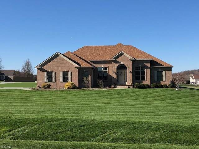 10828 Bluestone Lake Drive, Mantua, OH 44255 (MLS #4194228) :: The Art of Real Estate
