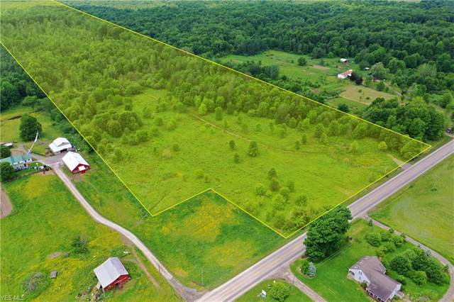 State Route 7, Williamsfield, OH 44093 (MLS #4194532) :: Tammy Grogan and Associates at Cutler Real Estate