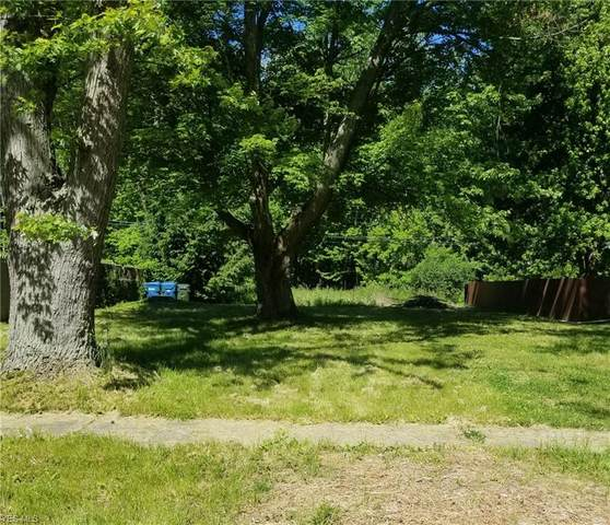 518 Lafayette Boulevard, Sheffield Lake, OH 44054 (MLS #4194733) :: The Holly Ritchie Team