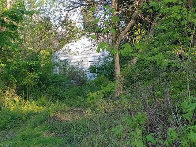701 S Lincoln Avenue, Bridgeport, OH 43912 (MLS #4195960) :: Select Properties Realty