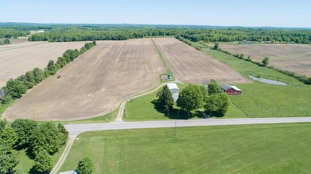 8263 State Route 303, Windham, OH 44288 (MLS #4197015) :: The Crockett Team, Howard Hanna