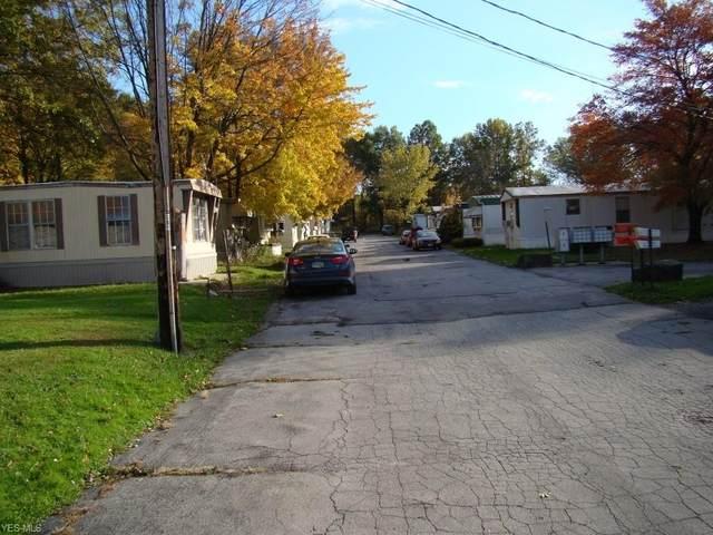 5305 County Line Road, Mineral Ridge, OH 44440 (MLS #4197367) :: The Crockett Team, Howard Hanna