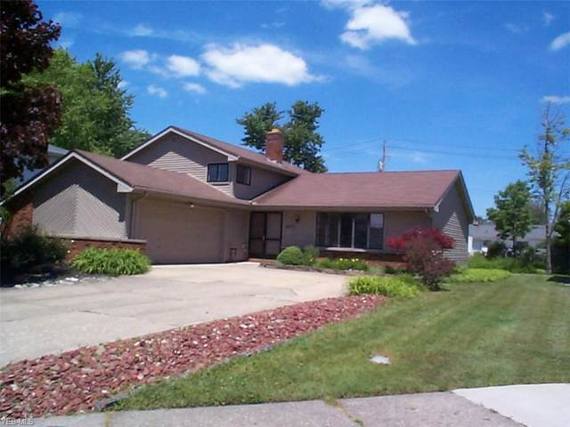 6033 Catalano Drive, Mayfield Heights, OH 44124 (MLS #4198069) :: Tammy Grogan and Associates at Cutler Real Estate