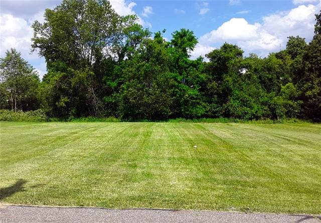 0 Floyd, Steubenville, OH 43953 (MLS #4198236) :: The Holden Agency