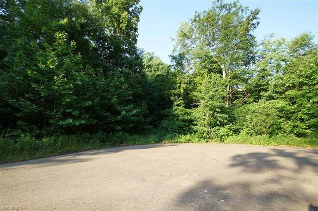 37th Street SW, Canton, OH 44706 (MLS #4198419) :: RE/MAX Trends Realty